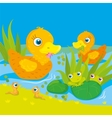 Ducks And Frogs On Pond vector image