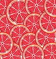 Grapefruit slices background vector image