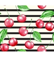 Cherry and line vector image