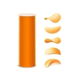 Set of Orange Box with Potato Crispy Chips vector image