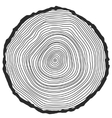 Conceptual background with tree-rings vector image