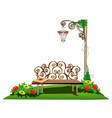 wooden bench in the garden vector image