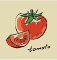 hand drawn tomato vector image vector image