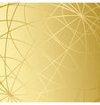 golden background with meridians vector image vector image