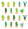 Cactus abstract collection in vector image