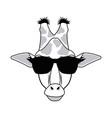 giraffe hipster animal wearing glasses fashion vector image