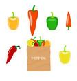 pepper in brown paper bag vector image