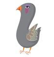 cartoon pigeon vector image