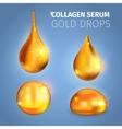 Collagen Serum Golden Drops vector image