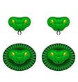 green snake head vector image