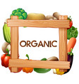 frame template with fresh vegetables vector image