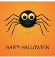 Happy Halloween orange background with spider vector image