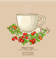 cup of cranberry tea vector image