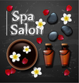 spa background with stone spa bottle vector image