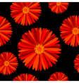 Seamless pattern with red flowers over black vector image