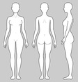 Female body from three angles vector image vector image