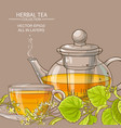 linden tea background vector image