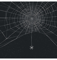 Halloween background with spider and web vector image