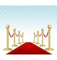 red event carpet vector image