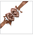 Brown bow with diagonally ribbon vector image
