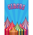 circus tent poster vector image