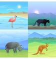 animals background set vector image