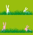 easter bunnies in grass vector image