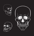 skull set white skulls collection vector image