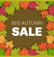 autumn sale floral poster vector image