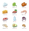 Protein food icons collection for healthy diet vector image