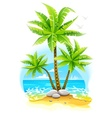 Coconut palm trees at tropical vector image vector image