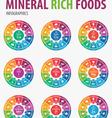 mineral rich foods iinfographics vector image