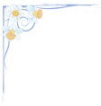 narcissus border vector image