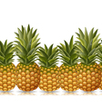 seamless border of pineapple vector image