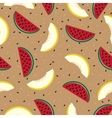 Slices of watermelon and cantaloupe seamless vector image