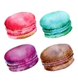 Macaroons vector image