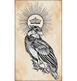 Detailed hand drawn bird of prey with a crown vector image