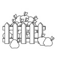 fence with apples fresh fruits icon vector image