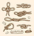 set of nautical knots vector image