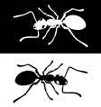 Ant icon image vector image