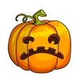 Holiday Halloween Pumpkin Jack Lantern vector image