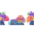 Coral reef on the rocks vector image