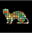 ferret weasel ermine mammal color silhouette vector image