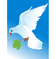 flying pigeon vector image