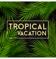 Tropical vacation card with palm leaves vector image
