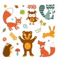 Cute forest animals colorful collection vector image