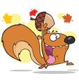 Happy squirrel cartoon vector image vector image