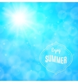 Enjoy summer background vector image