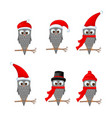 set of christmas owls with various emotions vector image