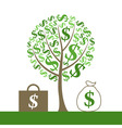 monetary tree vector image